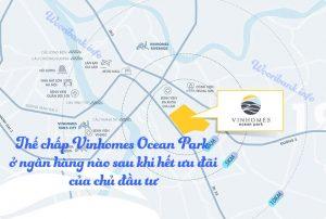 The chap Vinhomes Ocean Park
